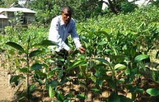 How a day labor becomes sustainable agriculture's trainer!
