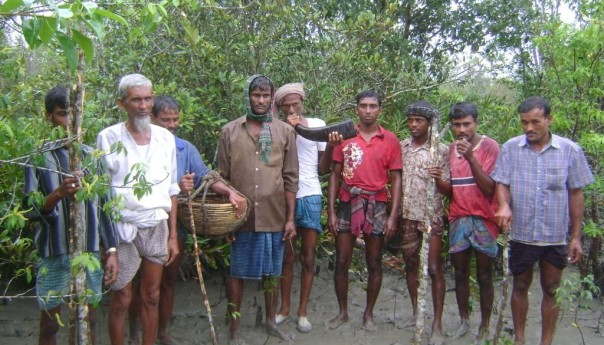Biodiversity and inter-dependency in the Sunderbans
