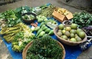 Increase the allocation for safe food production
