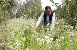 A man leading community towards agro-ecology