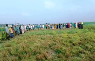 Haor farmers got three varieties of crops suitable for the area