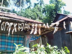Food preserving techniques of rural women