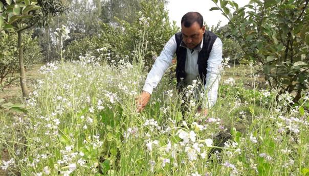 A man leading community towards agro-ecology