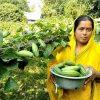 Nutrition Bank (Shoto Bari) fulfills rural people's nutrition need
